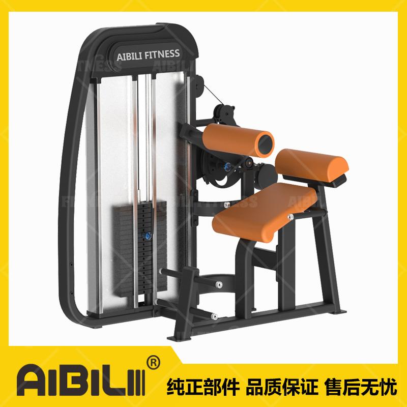 ABL-7102  背肌腹肌一体机 BACK EXTENSION&ABDOMINAL